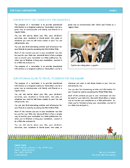 Family Newsletter Page 2