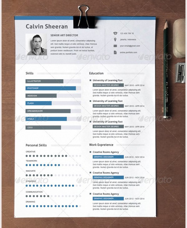 Download Creative Resume Template For Director For Free  Tidyform
