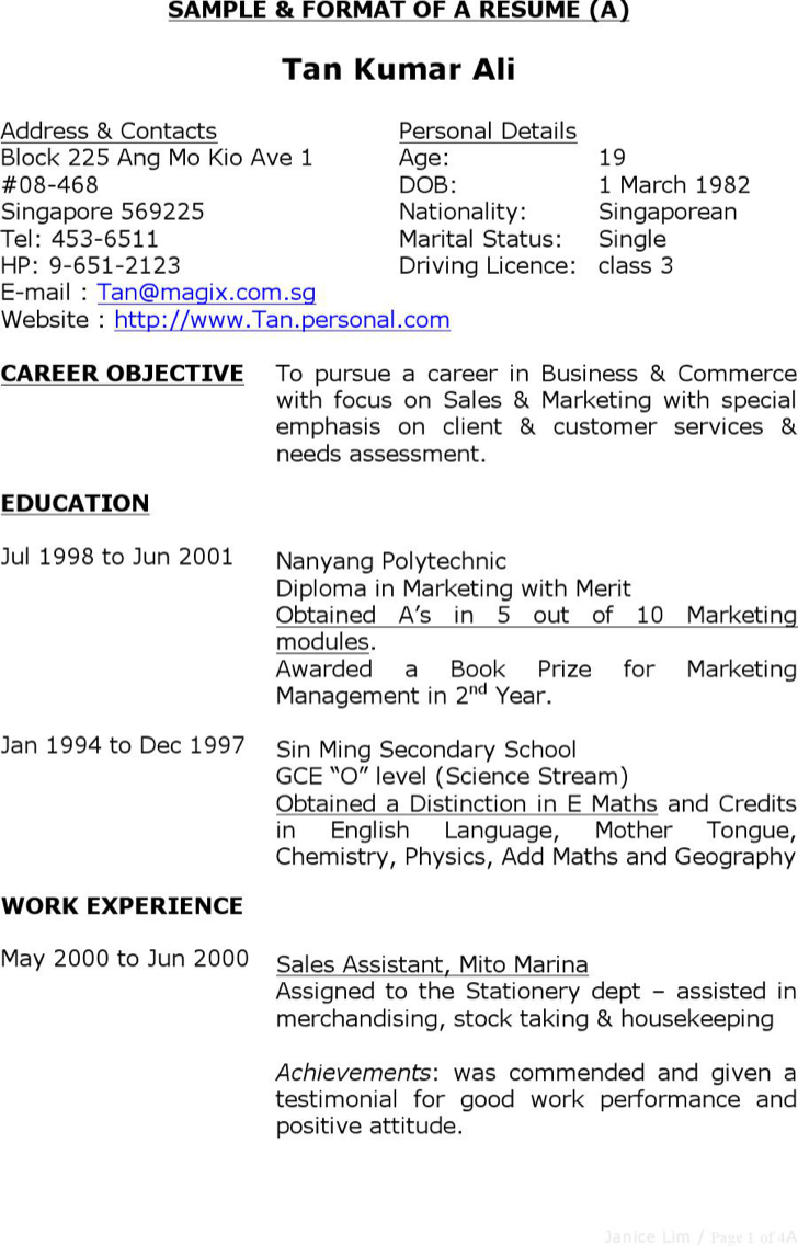 Download Sample Format Merchandiser Resume For Free Tidyform
