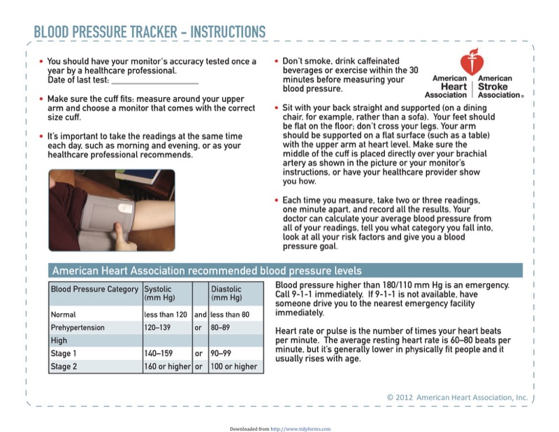 Blood Pressure Log Templates  Free Templates In Doc Ppt Pdf  Xls