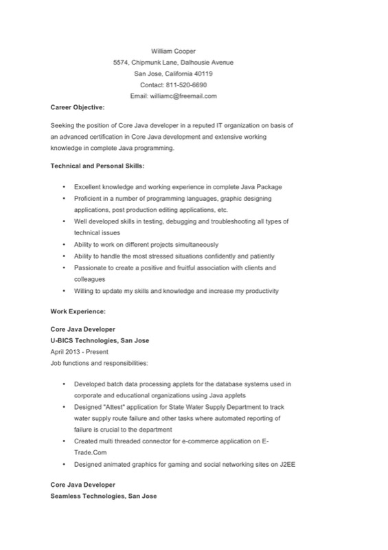 Java Developer Resume Template  Free Templates In Doc Ppt Pdf  Xls