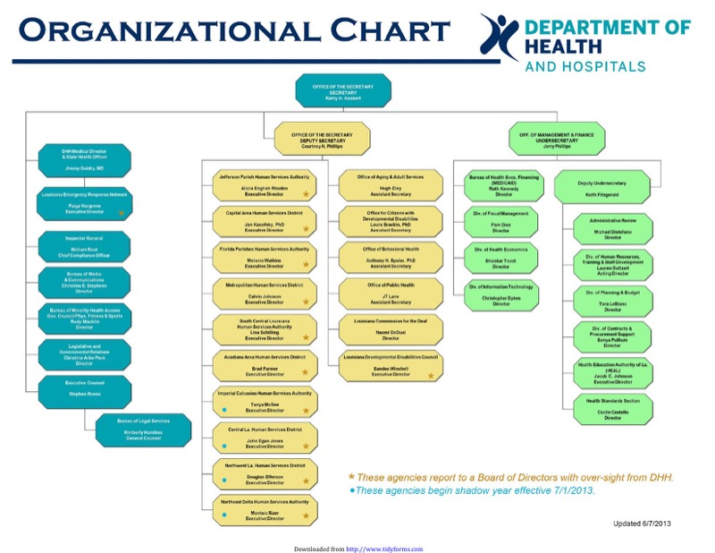 Hospital Organizational Chart Templates  Free Templates In Doc Ppt