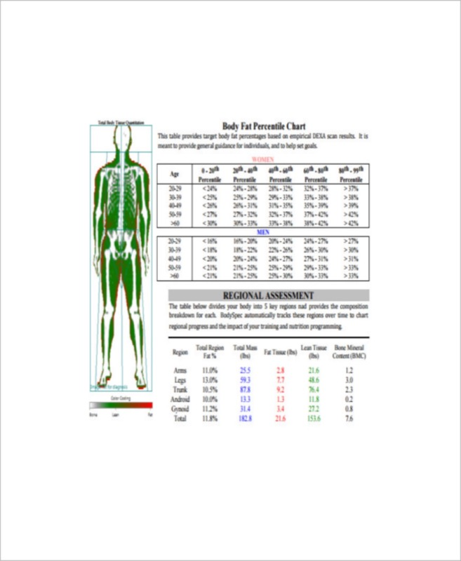 Sample Ideal Body Fat Charts Templates  Free Templates In Doc Ppt