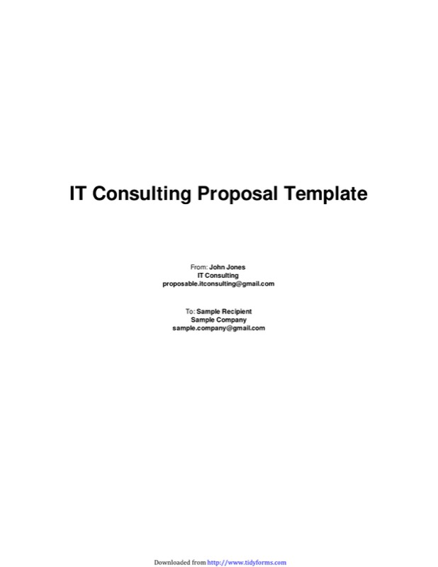 TidyForm  It Consulting Proposal Template