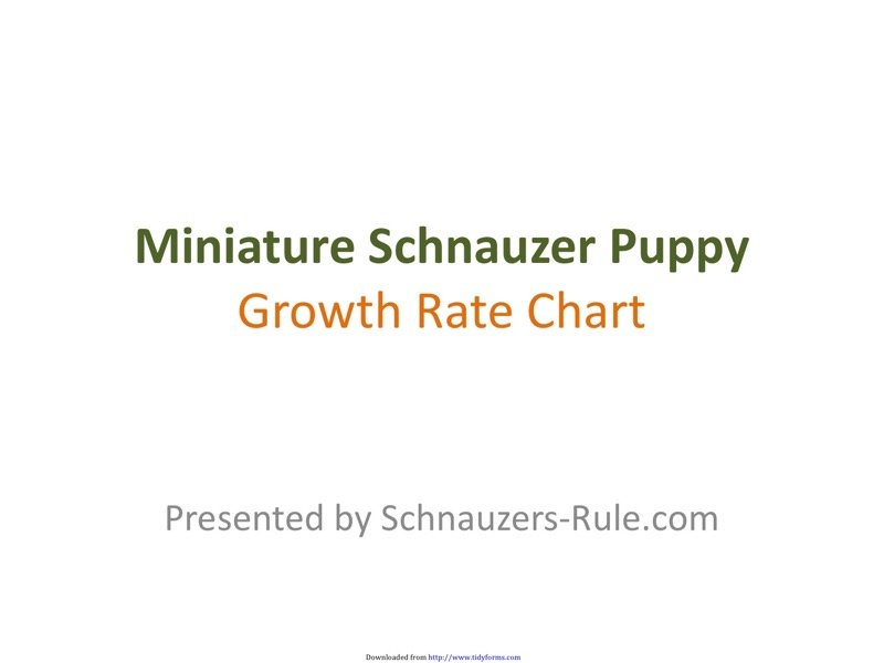 Puppy Growth Chart Templates  Free Templates In Doc Ppt Pdf  Xls