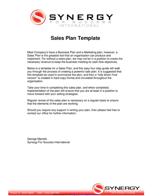 Sales Plan Template 2