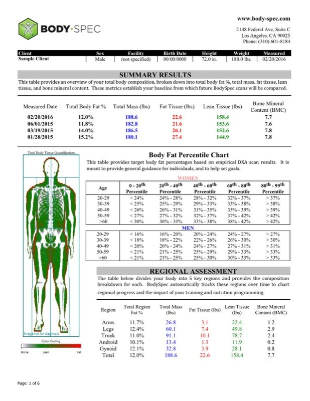 Sample Body Fat Charts Male Templates  Free Templates In Doc Ppt