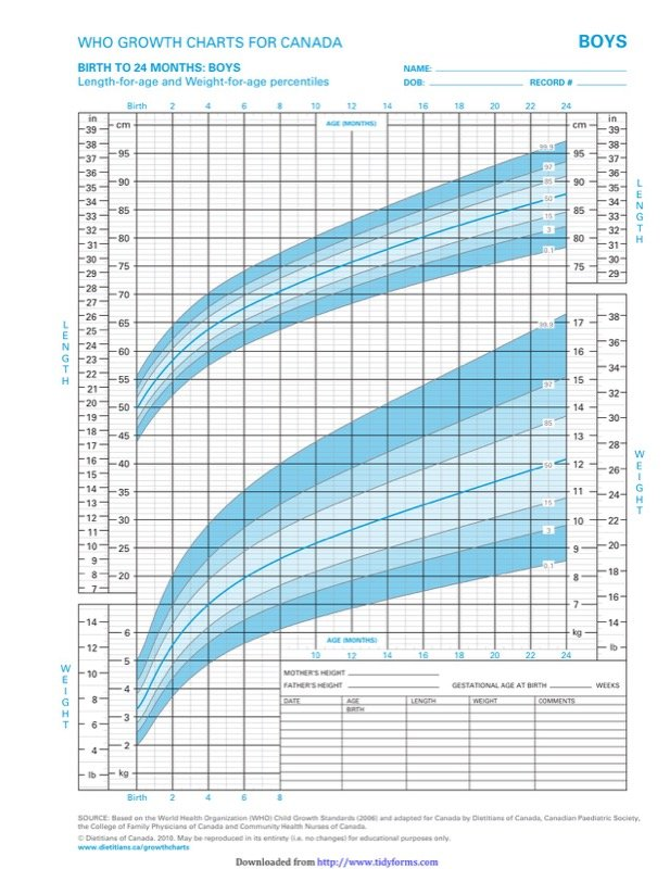 Boys Growth Chart Templates  Free Templates In Doc Ppt Pdf  Xls