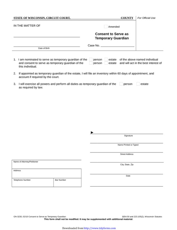 Wisconsin Guardianship Form  Free Templates In Doc Ppt Pdf  Xls