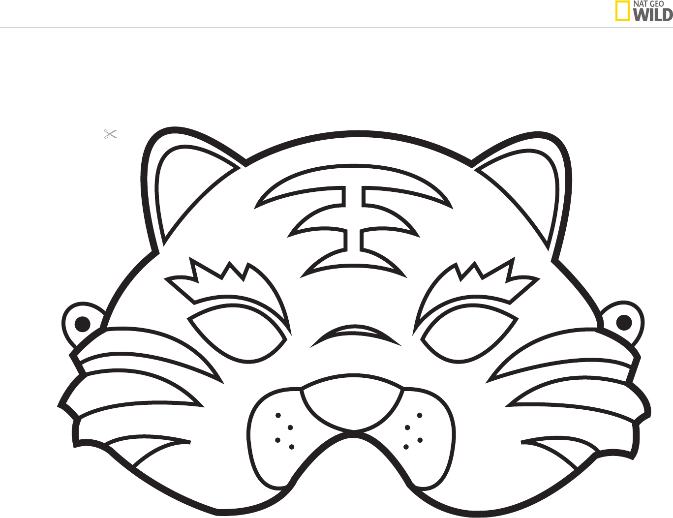 Animal Mask Template  Free Mask Templates